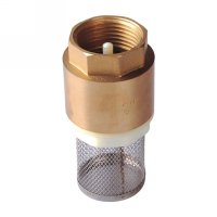 Spring check valve with filter(24310H)